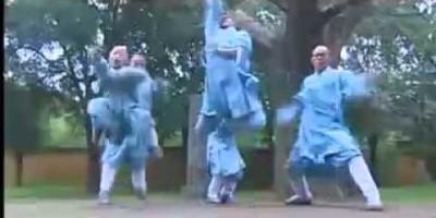 Легенда о шаолиньском кунг-фу выйдет в июле 2011 года