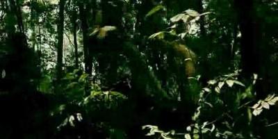 Тизер-трейлер фильма The Five