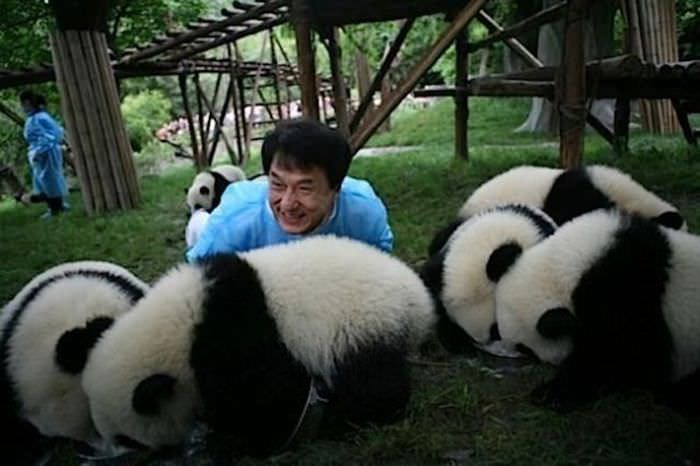 awesomely-cute-Jackiechan