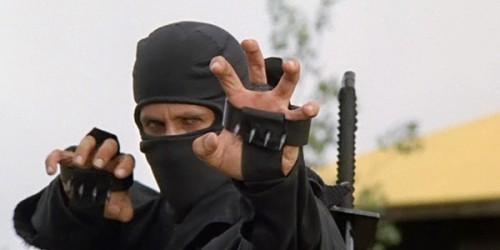 Первые подробности о проекте American Ninja Apprentice 2